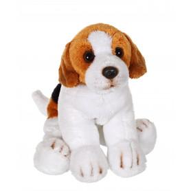 Floppipup beagle - 22 cm