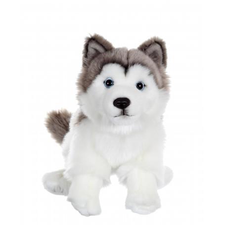 Chien floppy assis Husky - 25 cm